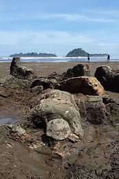Malin Kundang Beach