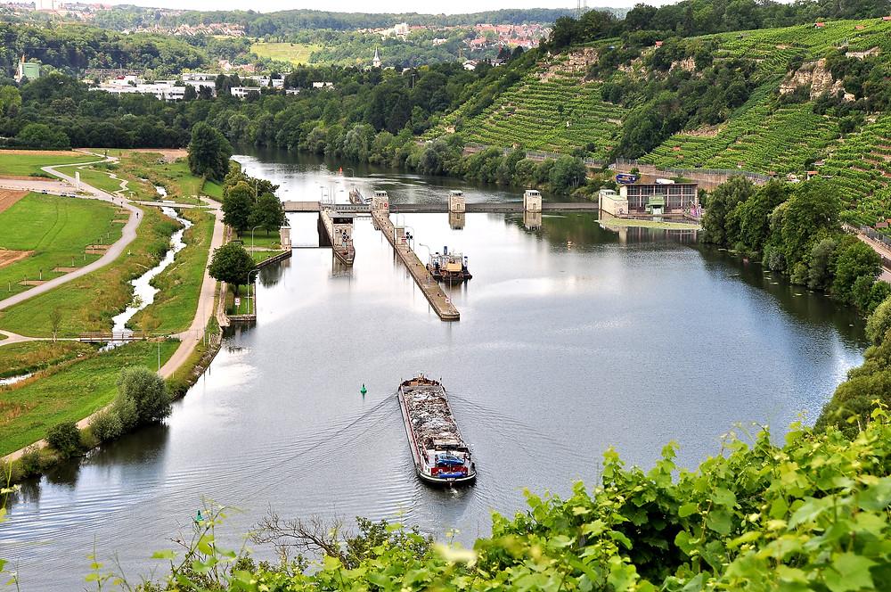 Staustufe Poppenweiler, Wende beim Neckarschwimmen 2019