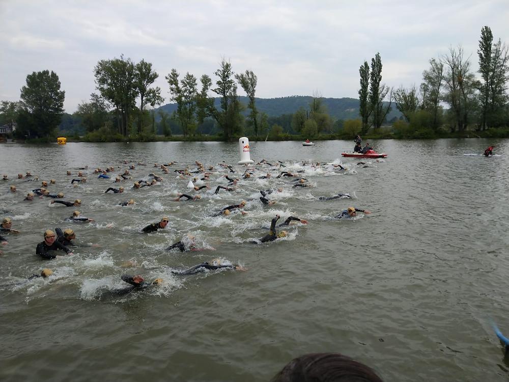 Klosterneuburg Swim Open