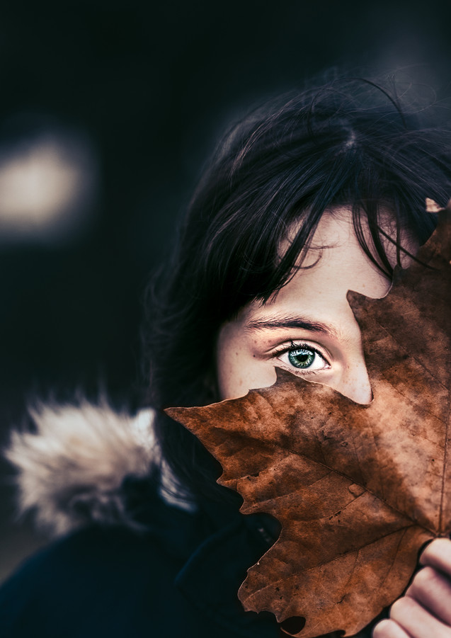 Mistan Photographe Wonderland