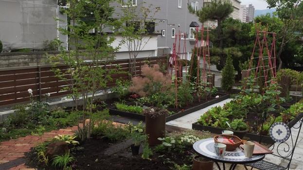 個人庭 植栽リノベイション