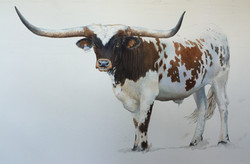 Watercolor painting of Boots