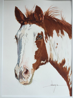 Watercolor portrait of Bella