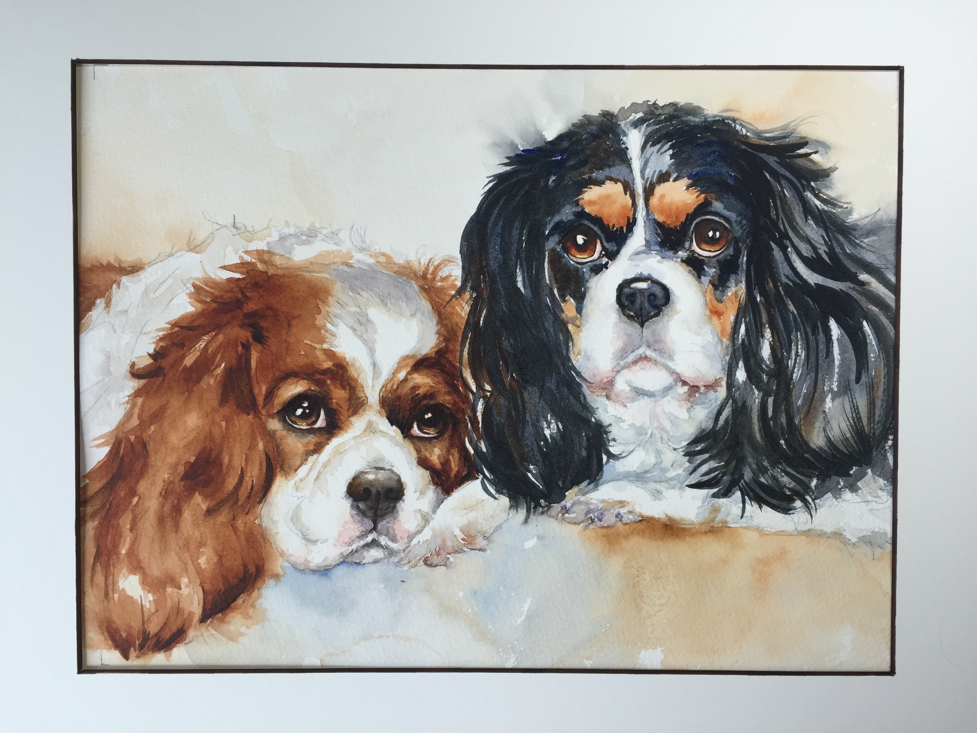 watercolor painting of a Blenhein and Tri-colored King Charles Cavaliers