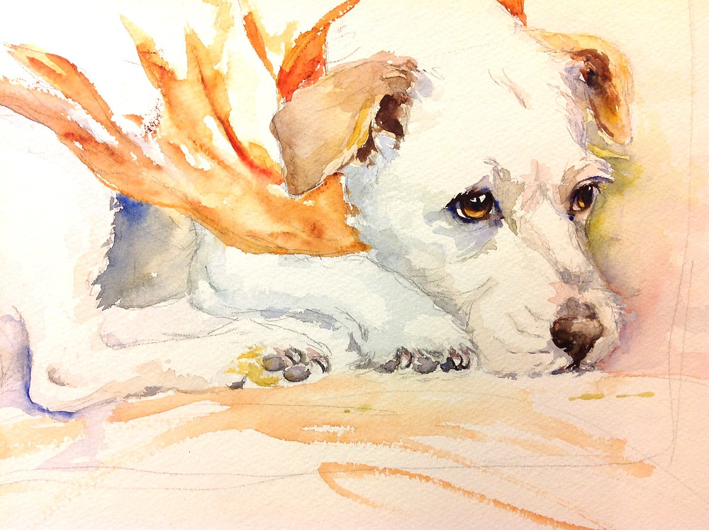 My painting of the dog