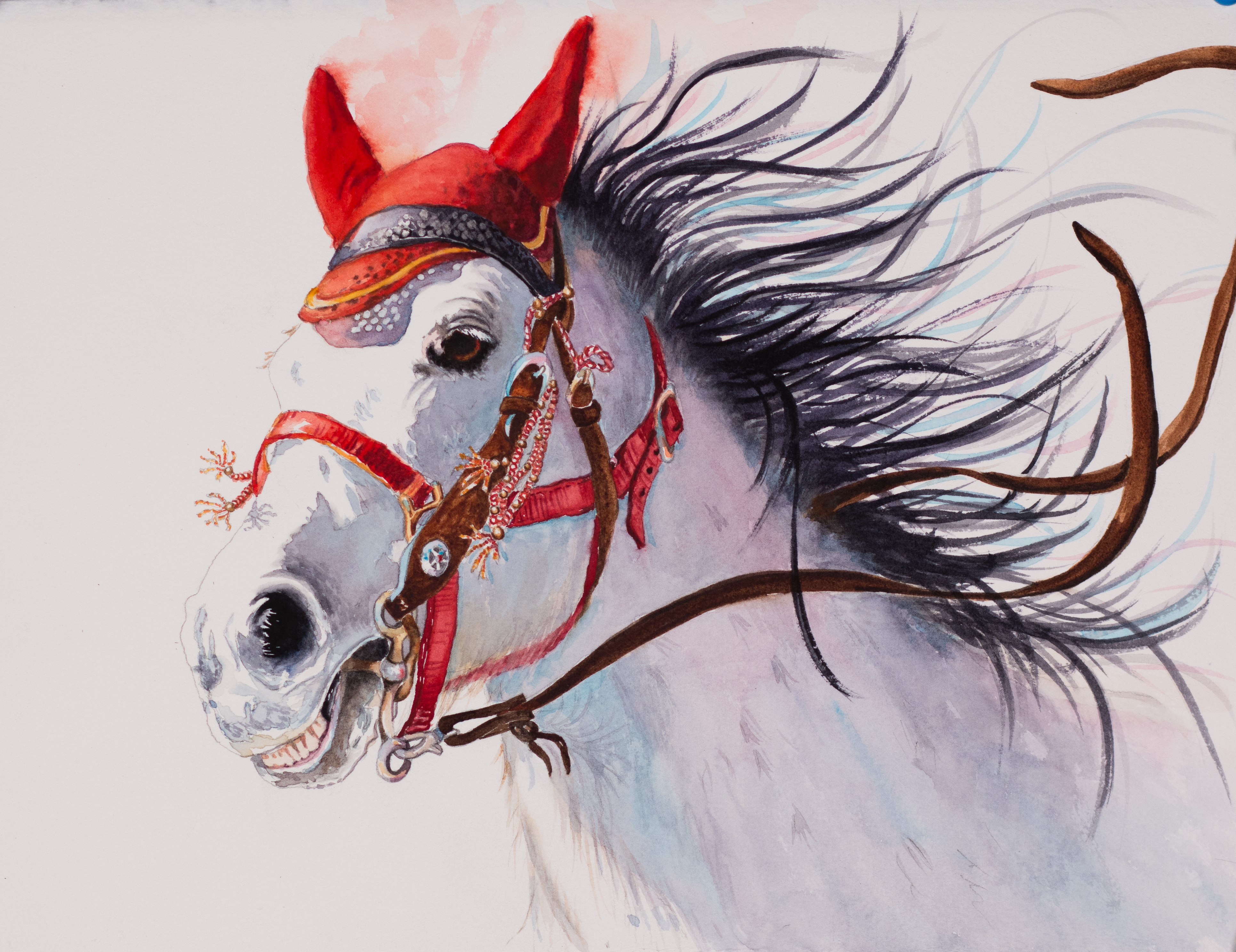 Diablo horse