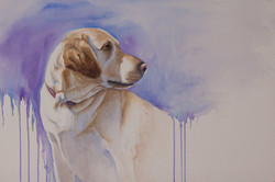 Watercolor painting of Molly