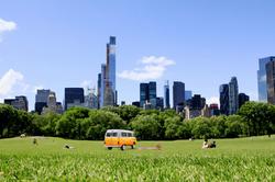 van_newyork
