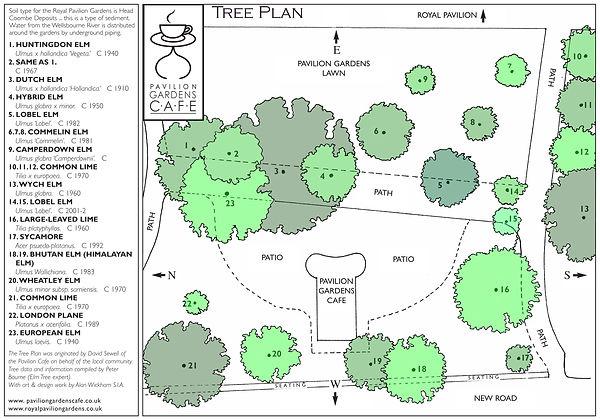 Tree+Plan+2009.jpg