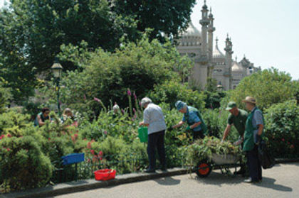 Volunteering at the Royal Pavilion Gardens