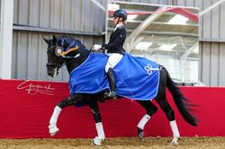 4-jr paard Firenzo (For Romance I x Chri