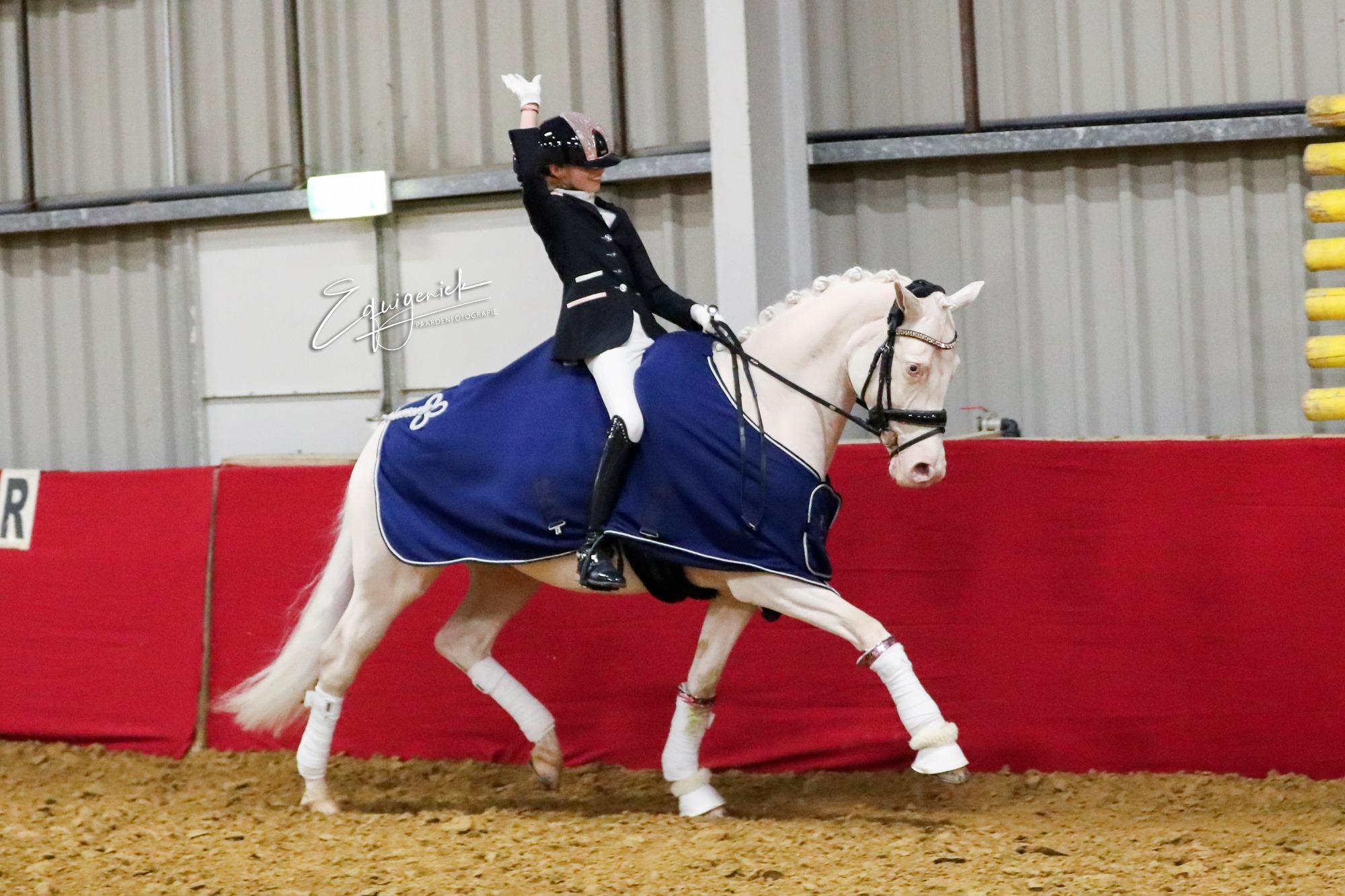 5-jr pony's Wert's Snowflake Isabella Ka