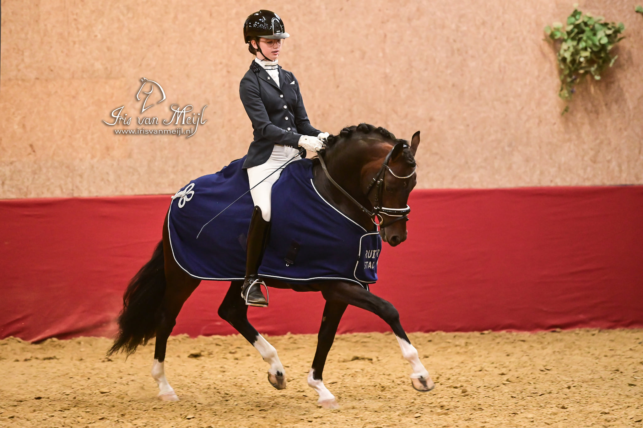PJT 2019 4-jr Pony's Nijeberts Marc