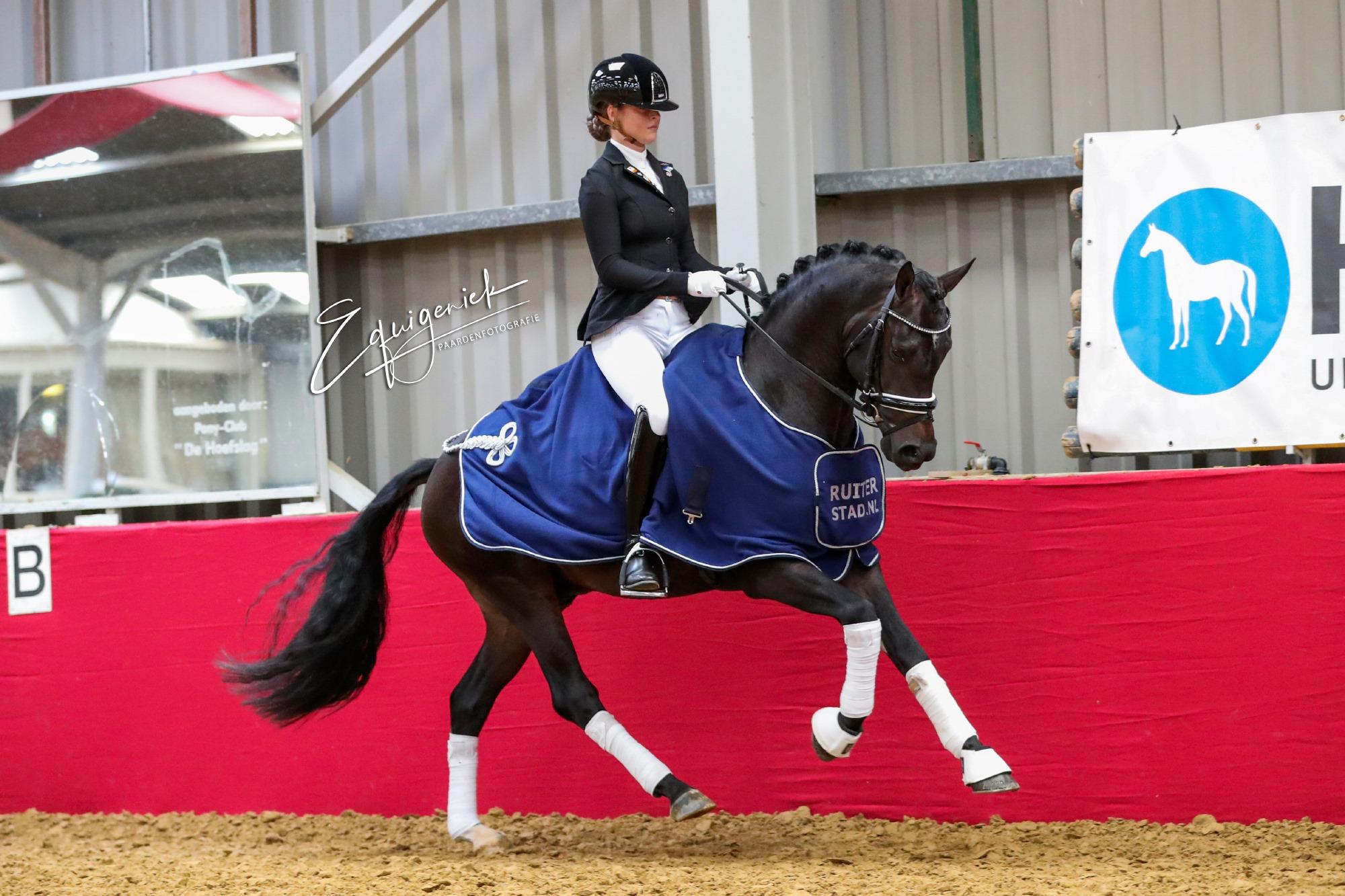 3-jr pony's Dempsy Sil Bo van Nimwegen