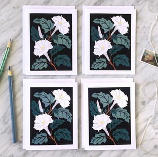 Sacred Datura Blank Note Card Set