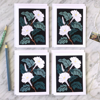 Sacred Datura Blank Note Card Set