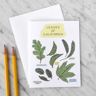 Leaves of California Note Card