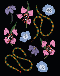 Clarkia Unguiculata and Snakes