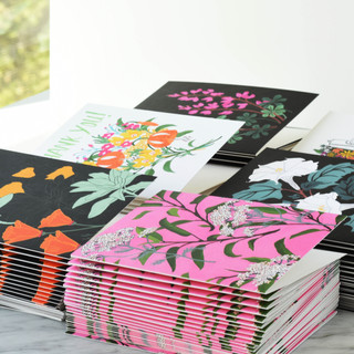 Collection of Blank Note Cards
