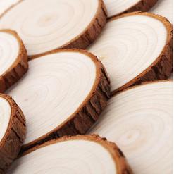 Rustic Wood Slices