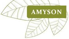 Amyson logo .png