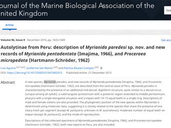 BMAP reporta nueva especie marina