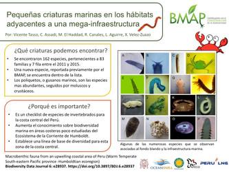 Diversidad de especies reportadas por el BMAP