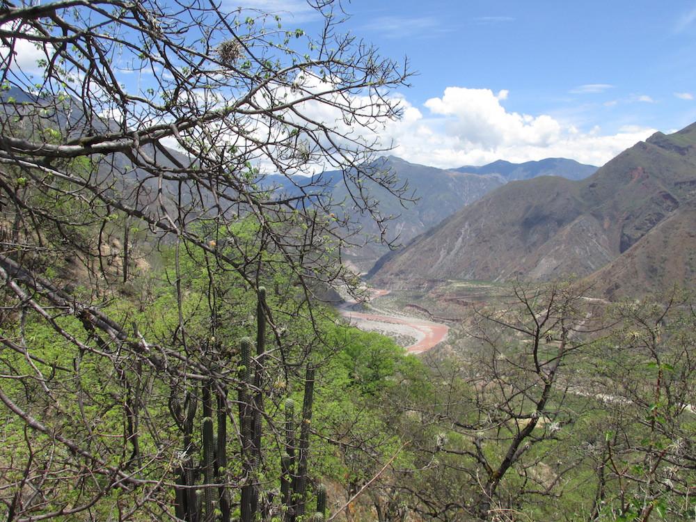 Bosque seco interandino, Valle del Torobamba, Ayacucho