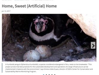 Entrevista al BMAP sobre investigación con pingüinos