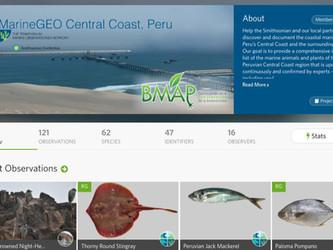 Biodiversidad Marina en iNaturalist