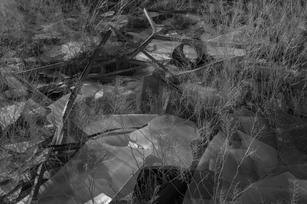 Requiem-14.jpg