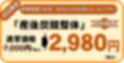 産後価格2980圧縮.png