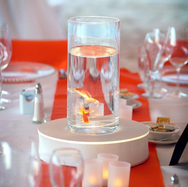 Goldfish Table Settings
