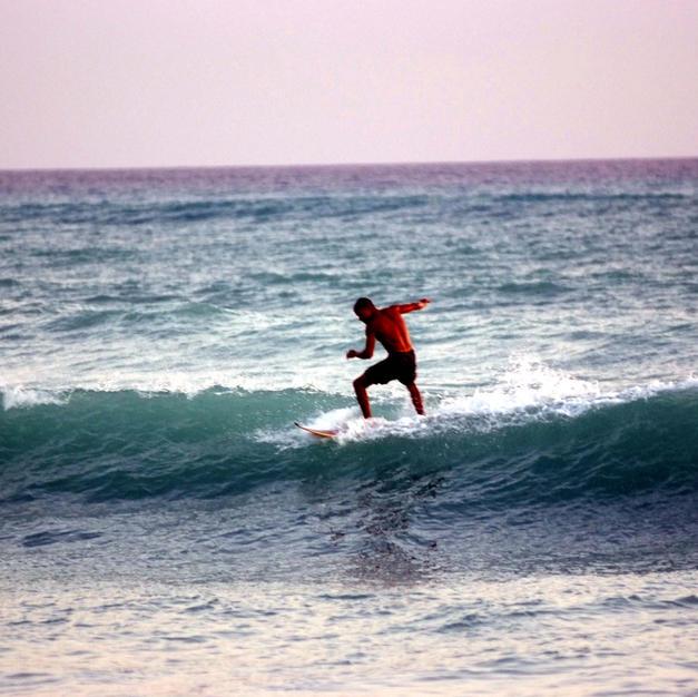 Surf Up 2