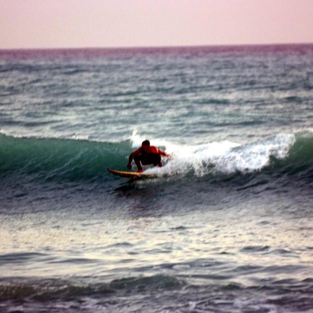 Surf Up 1