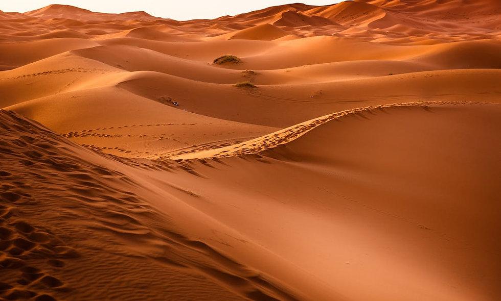 MARRUECOS, DESIERTO DEL SAHARA