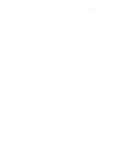 ZP logo wit.png