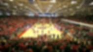 Stony_Brook_Arena_3_edited.jpg