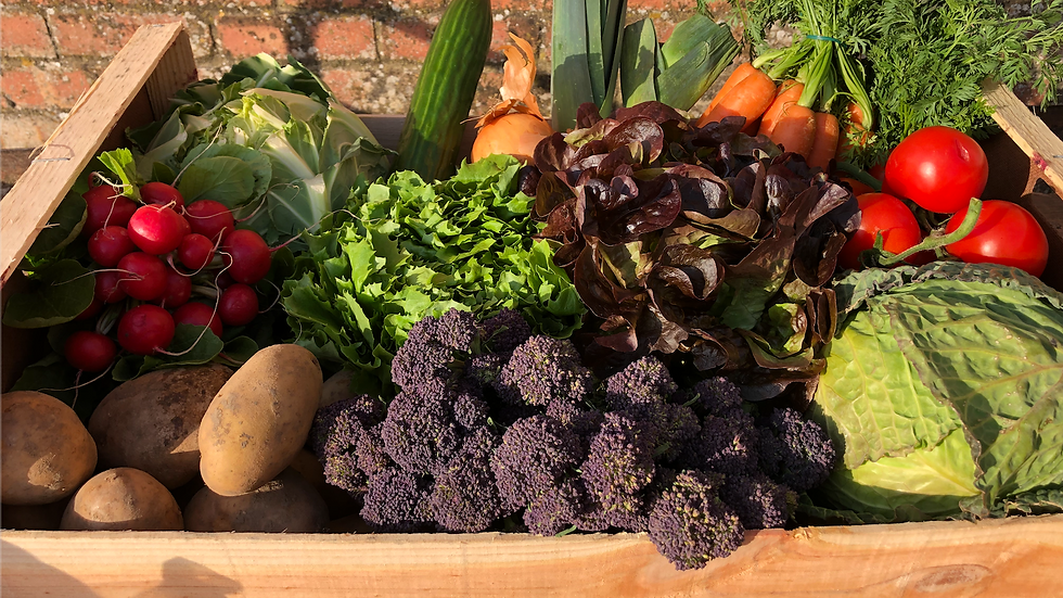 Large Veg Box - Collection only
