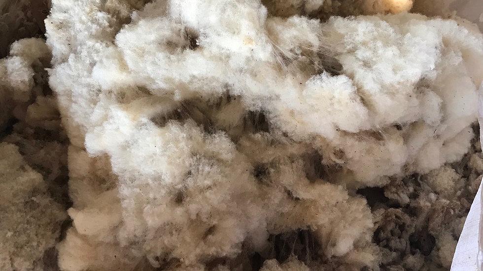 Southdown Fleece