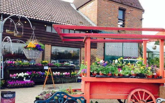 The farm shop in summer