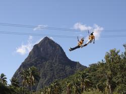 adrenaline-zipline-adventure-st-lucia-wi-4