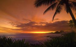 tropical-sunset-1920-1200-3910