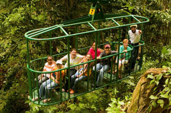 st-lucia-aerial-tram-and-rainforest-tour-in-castries-42987
