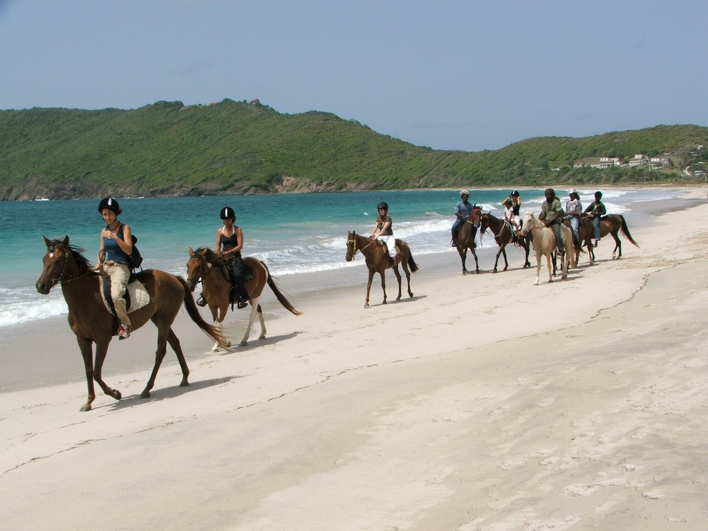 horseback-riding-st-lucia