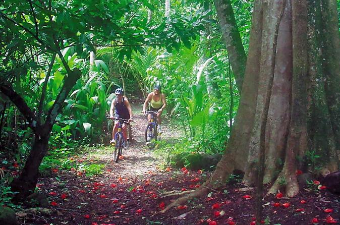 st-lucia-combo-tour-jungle-biking-and-snorkeling-adventure-in-castries-169479