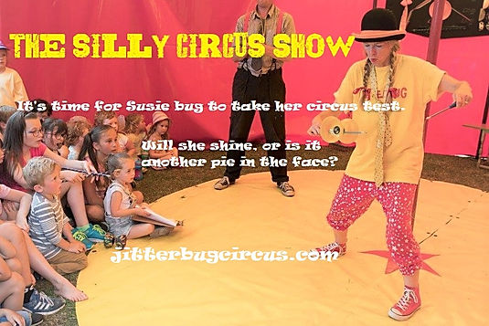 silly circus show