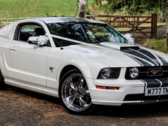Ford Mustang GT Pegasus