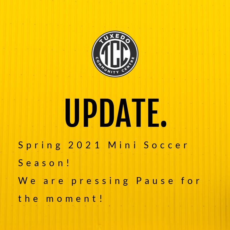 Mini Soccer Update.png