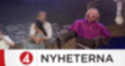 tv4inslagrobinhood1.jpg